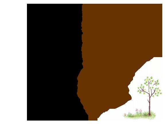 優しさと健気と心強さと自然の優しい風 北海道科学大学 工学部 建築学科 教授 福島明さん
